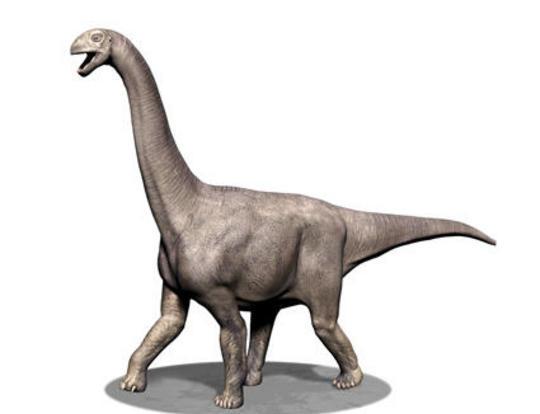 El Turiasaurus, el mayor dinosaurio que habitaba por Europa. Foto Quo
