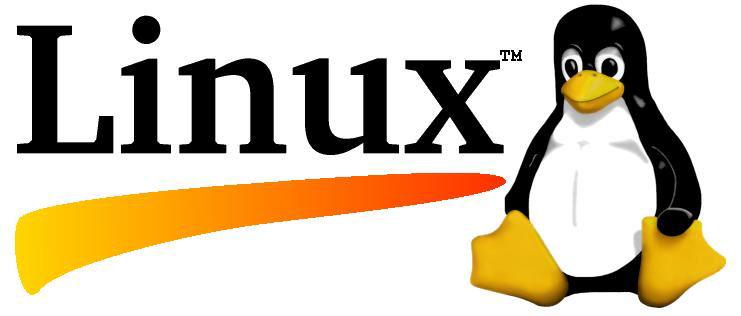 Linux, uno de los grandes inventos modernos del S.XXI. Foto dongee