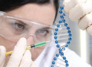 herramienta CRISPR
