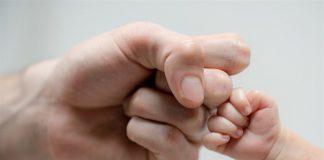 Los papás también pueden transmitir ADN mitocondrial a sus hijos